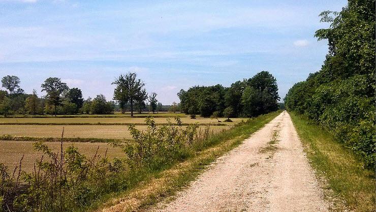 Parco-del-ticino-the-green-area-surrounding-Cassinetta-di-Lugagnano-photography-by-J.-Grunig-via-Flickr